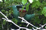 Malia under bushes